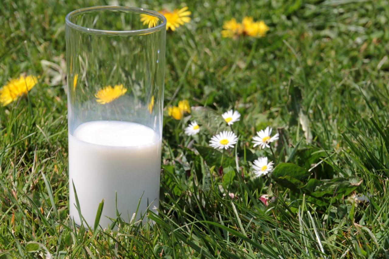 отвары на молоке