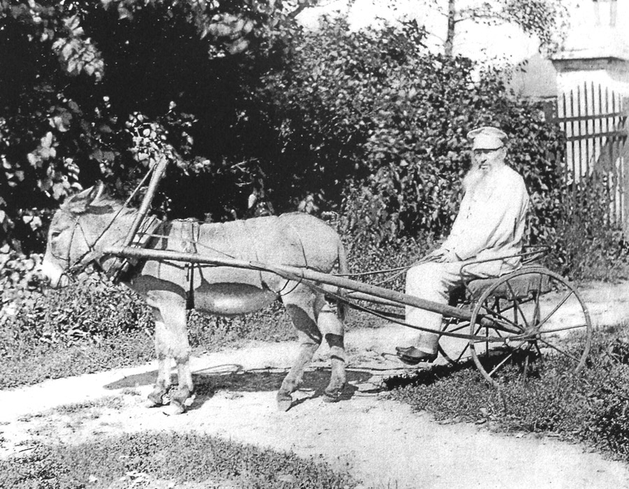 Фет в Воробьёвке (1890)